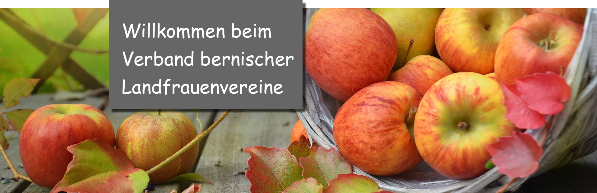 Apfelkorb_willkommen
