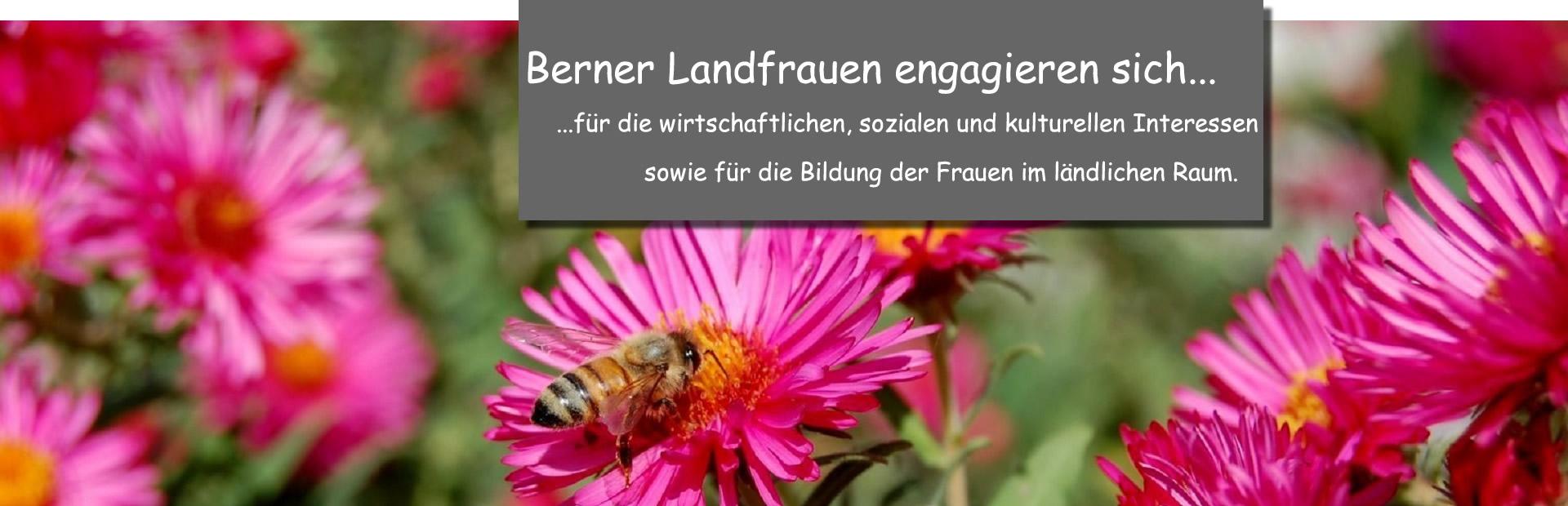 Biene_Beielitrost