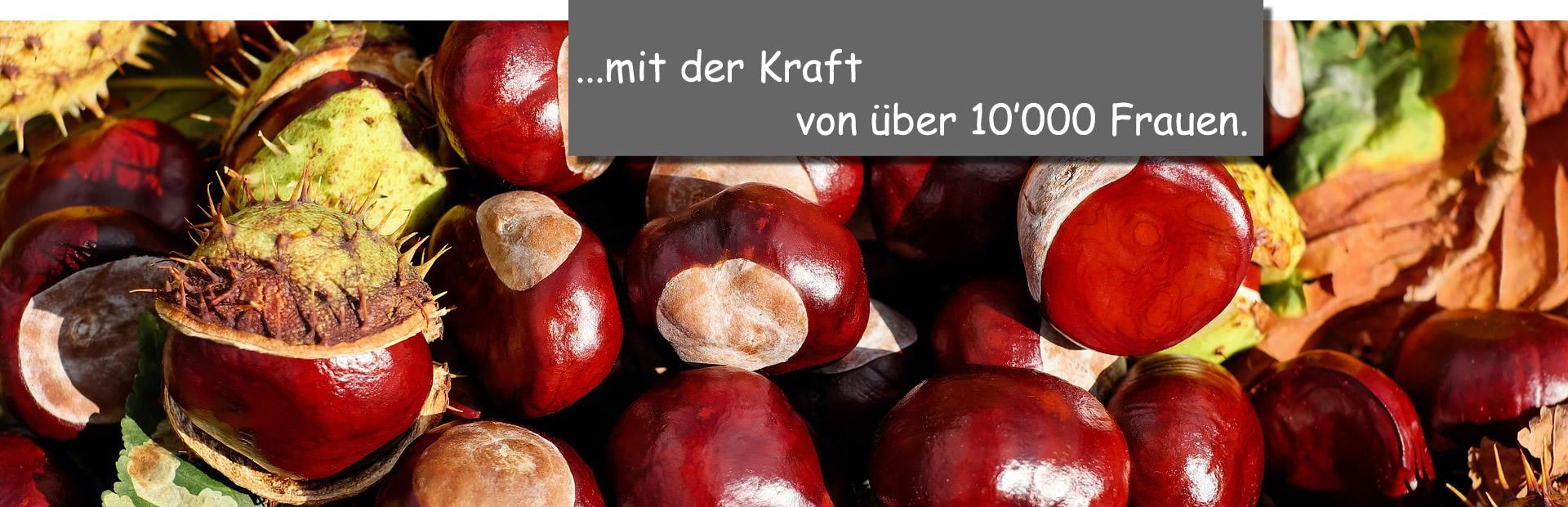 Kastanien_Kraft